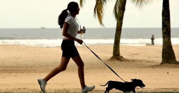 28jun2012-mulher-caminha-com-cachorro-em-calcadao-de-praia-de-santos-onde-para-cada-grupo-de-100-mulheres-ha-84-homens-o-maior-desequilibrio-entre-a-populacao-dos-dois-sexos-no-pais-1340915661756_956x500 (1)